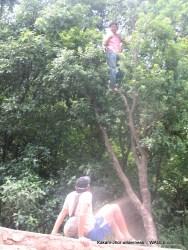 The Kafal Tree