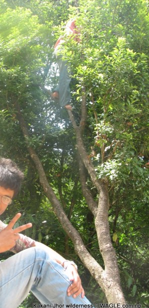 Kathmandu Kakani Jhor Hiking (55)