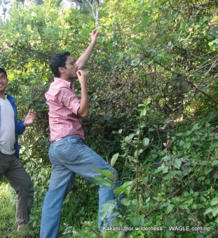 Kathmandu Kakani Jhor Hiking (7)
