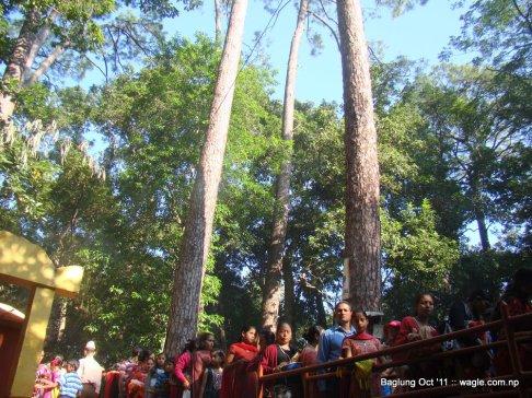 baglung kalika temple dashain festival (22)