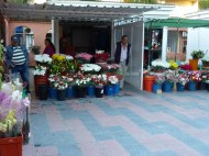 Fresh flowers at the Almunecar municipal market, open Monday - Saturday until 2.