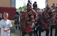 Decadent horses