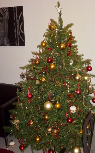 Christmas Tree Estepona, Spain 2013 House Sit