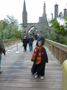 Harry Potter Experience at Universal Orlando, Florida
