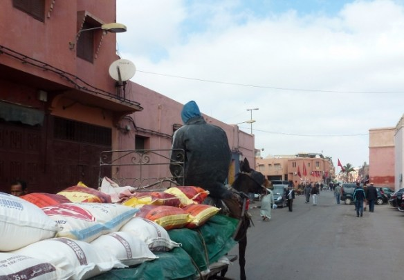 Navigating the streets of Marrakech