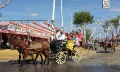 Festival in Seville Spain - Feria de Abril - Horse drawn carriages a 1 week fiesta every Spring