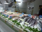 Shopping in Almuñécar - Municipal Market Fresh Fish Daily