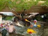 Het Meerdal Aqua Mundo Toddler Pool