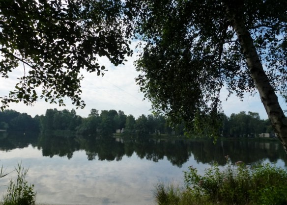 Het Meerdal Environment Lake View