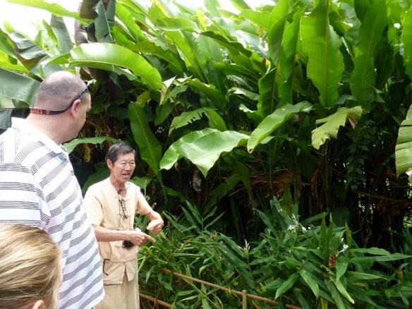 Scorpion Tailed River Cruise Garden Tour