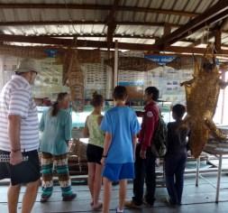 Siem Reap Crocodile Farm on lake (2)