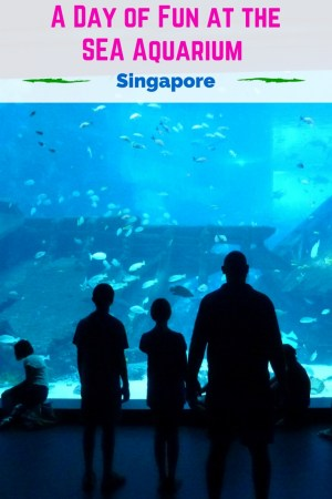 The Wagoners Abroad check out the SEA Aquarium in Singapore, and come away impressed. Take a peek at what lies inside, your kids will love it! Read more at WagonersAbroad.com