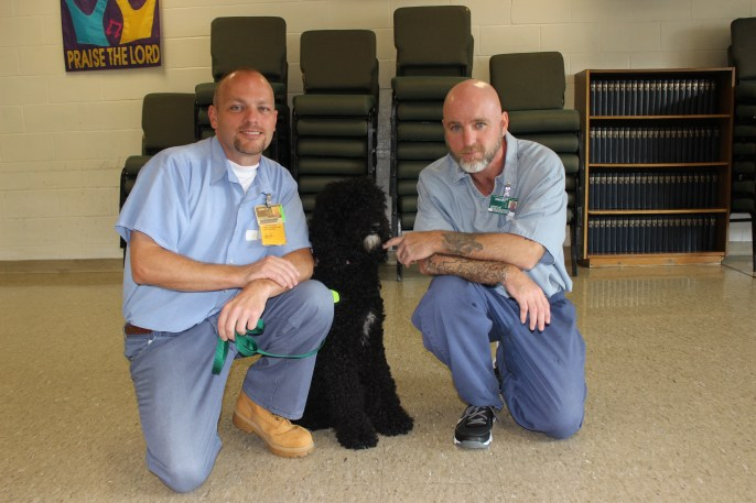 Labor Of Love - W.A.G.S. 4 Kids Volunteers and Staff introduce #GraftonProject Inmates to their puppies. Labor Day, 2014