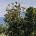 5 Tempat wisata alam di ciamis yang Wahbanget!