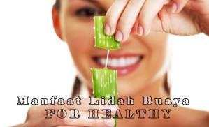 5 Manfaat Lidah Buaya Bagi Kesehatan Tubuh