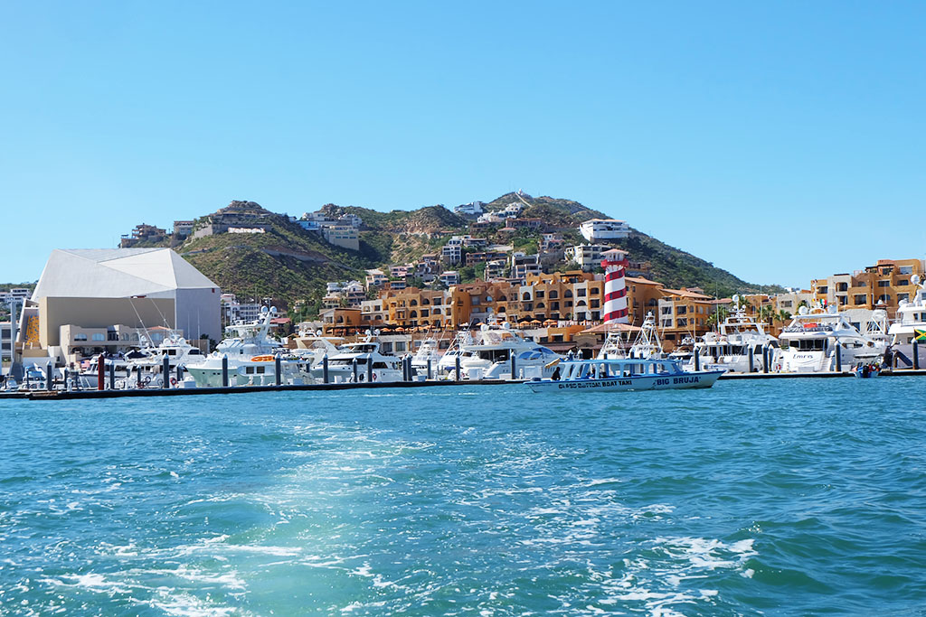 Things To Do in Mexico_Cabo San Lucas_Travel Blogger Jonathan From Canada_6