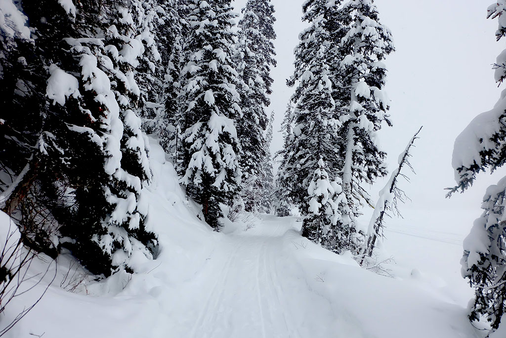 Visit Alberta_Lake Louise_Banff_Travel Blogger Canada_Jonathan Waiching Ho_9