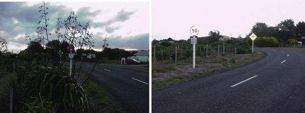 Flax hides the 50 Kph sign.