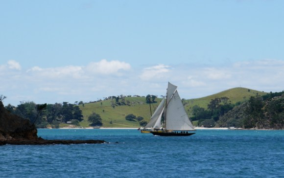 Waitangi on her way to winning
