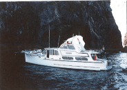 1994/95