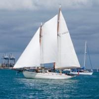 A Woody Weekend - CYA Patio Bay Invasion