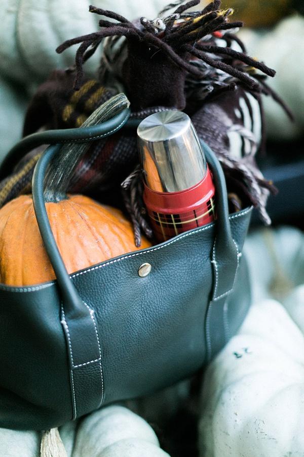 Fall necessities with @waitingonmartha @jmclaughlin #spon #fall