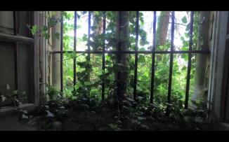 cionci_zangirolami_kalopsia_video-still_april-2016_6