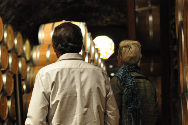 Looking into the cellars