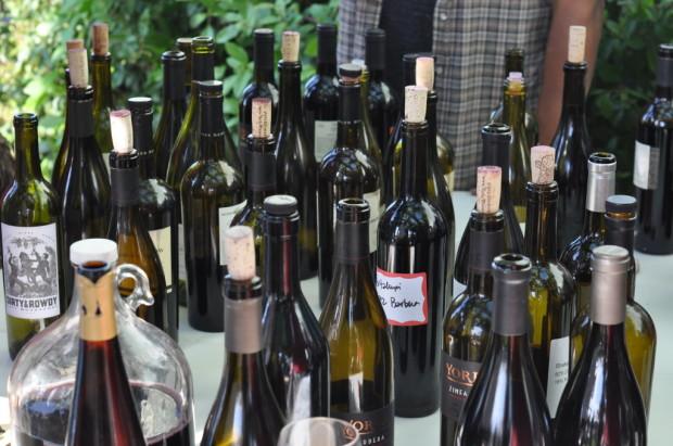 Shake Ridge Wines