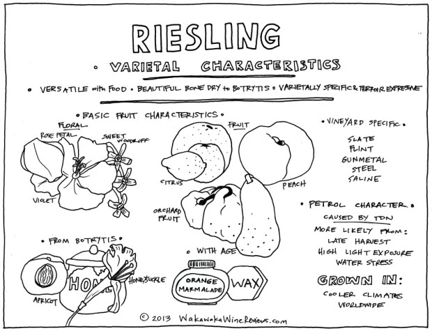 Riesling Characteristics