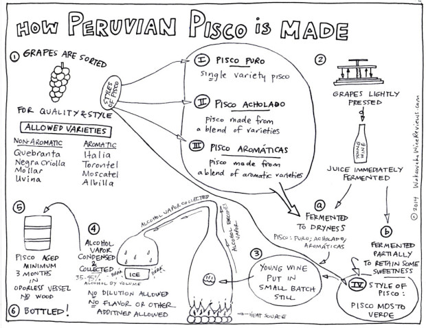 How Peruvian Pisco is Made