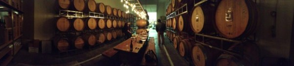 In the cellar of Antica Terra