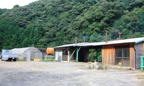熊野黒潮本舗