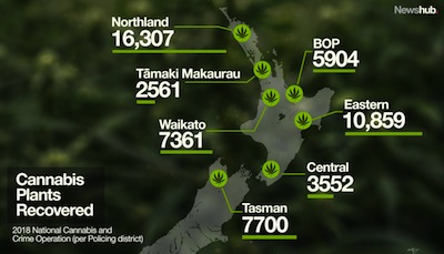 New Zealand: National Cannabis and Crime Operation Highlights Weed Grown In NZ