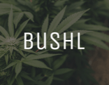 We Like The Idea Of Bushl …We Just Wish They'd Explain More Clearly What They Are Doing