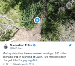 Honestly Officer I Didn't Know Bad People Were Growing $A20Million Worth Of Weed On My Property