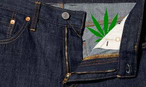 Levi's Say They Make Hemp Feel Like Cotton
