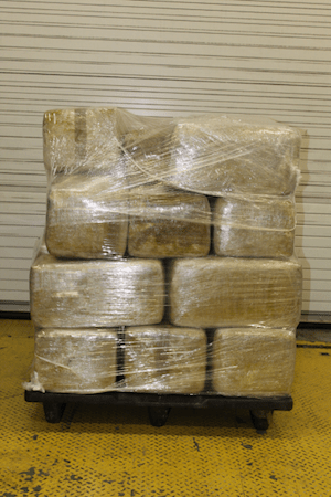 USA: CBP Field Operations Seizes Over $115K in Marijuana within Commercial Shipment