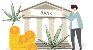 Pot banking rules grow hazier during pandemic says American Banker
