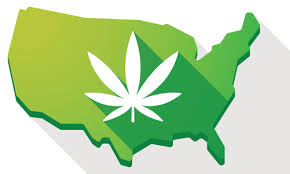 NCIA Offers Complimentary Membership To Social Equity Cannabis Applicants, Licensees