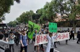 Taiwan: Cannabis use a hidden issue says ex-prosecutor