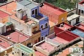 Spain: Almeria neighbourhood sees 186 Marijuana plants seized