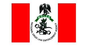 Nigeria: NDLEA intercepts 34 bags of cannabis at Gwagwalada