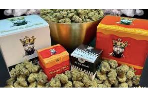 """Ice Cube Announces New Marijuana Line """"Fryday Kush"""""""