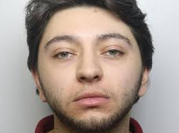 UK: Drug dealer jailed after police found cannabis and ecstasy pills in garden shed and caravan
