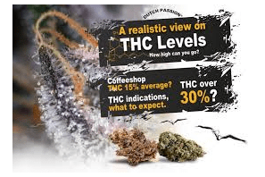 Paper: The frequency distribution of reported THC concentrations of legal cannabis flower products increases discontinuously around the 20% THC threshold in Nevada and Washington state