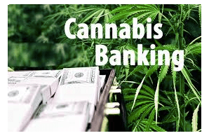 Blog Article: Overcoming Hurdles in Cannabis Industry Banking