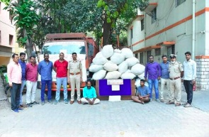 India – New Delhi: Two arrested while smuggling 141 kg of marijuana into city
