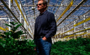 Arizona: Copperstate Weed Farm Over The Road From The Latter-day Saints temple is biggest in USA