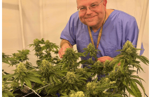 After 30 Years, Chemdog Grows First Legal Crop Reports Cannatech